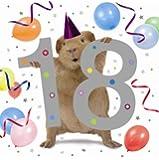 18th Guinea Pig Birthday Card The Crazy Gang