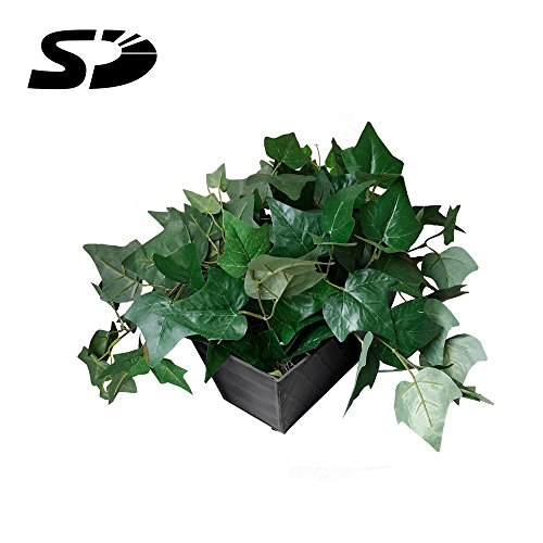 SD Card Self Recording Covert Spy Camera (Camera Hidden in Fake Plant) by SCS Enterprises