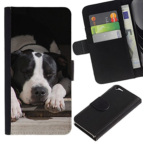 EuroCase - Apple Iphone 6 4.7 - Boston terrier white black dog - Cuir PU Coverture Shell Armure Coque Coq Cas Etui Housse Case Cover