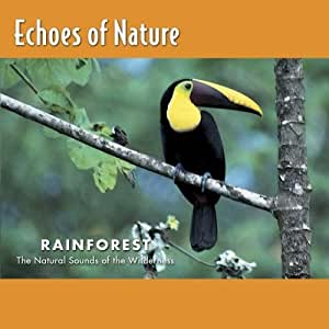 Tropical Rainforest  Echoes Of