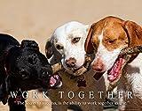 Dog Motivational Poster Art Print Veterinarian Groomer Gifts Treats Bones 11×14 Wall Decor Pictures