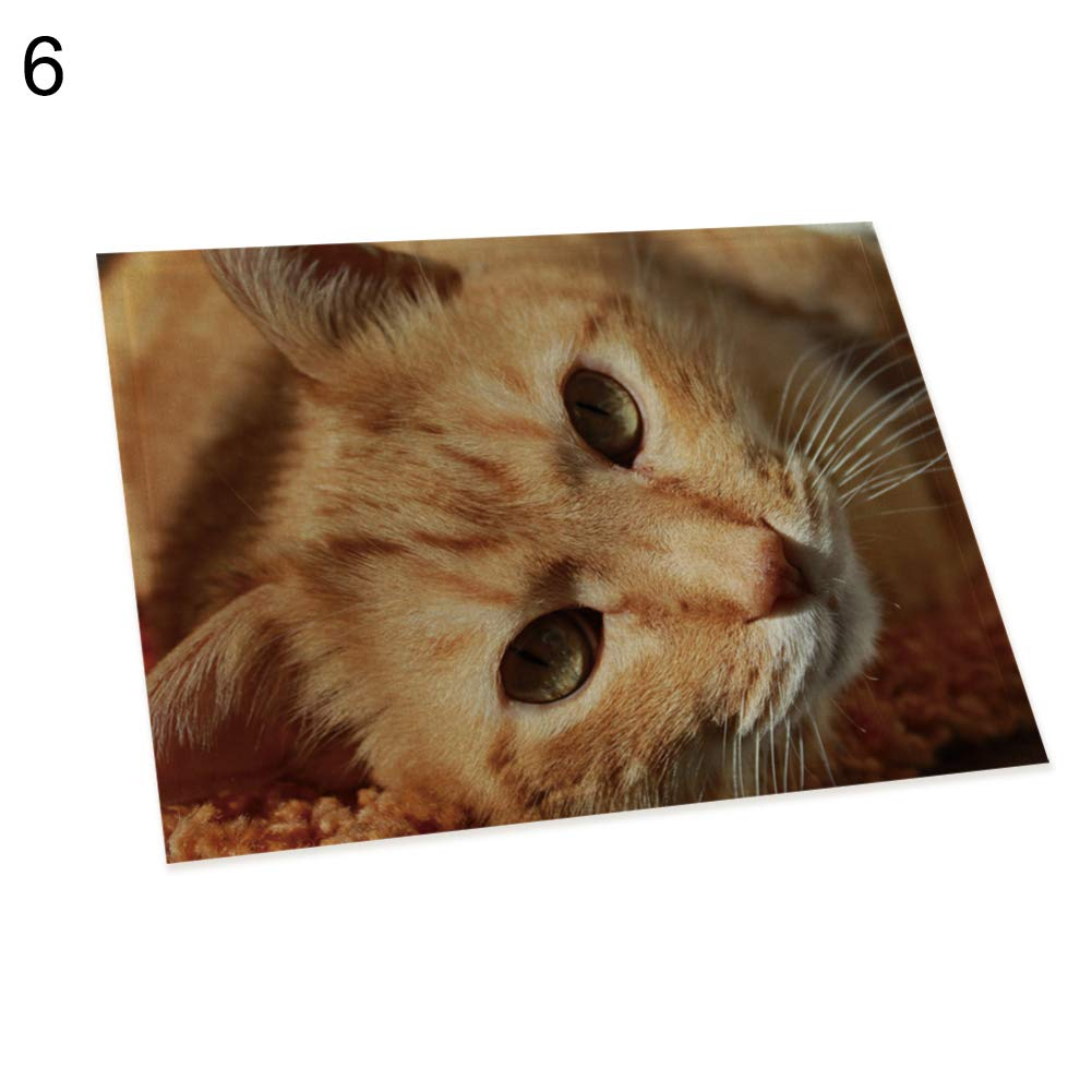 memorytime Cute 3D Cat Print Placemat Pad Linen Dining Table Insulation Mat Home Decor Kitchen Dining Supplies - 6#