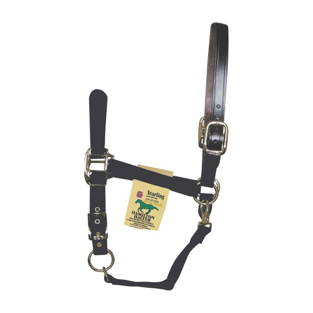 Hamilton Adjustable Halter with Leather Crown