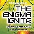 The Enigma Ignite: The Enigma Series, Book 3