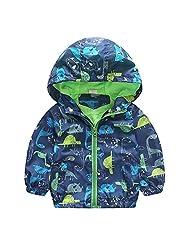Baby Boy Kid Cartoon Dinosaur Hooded Coat Jacket Hoodies Windbreaker Outwear