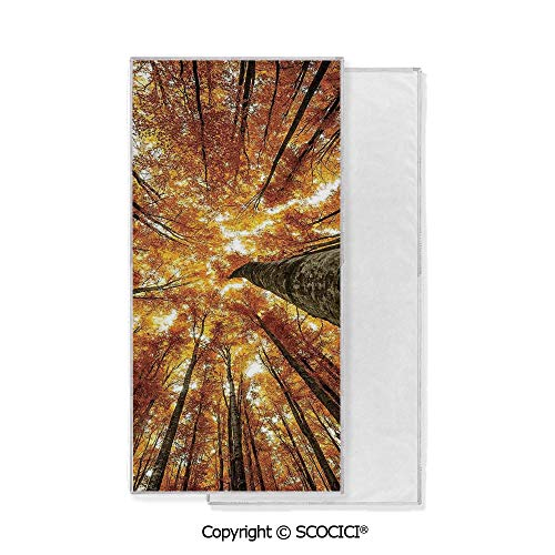 Long-Lasting and Soft Lightweight Quick-Dry Polyester Towel,Big High Beech Trees Deciduous Shedding Canadian Maples Idyllic Print (15x30 inch),Suitable For Camping, Running, Cycling, Gym,Highly Absor ()