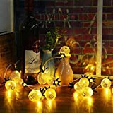 YRD TECH Pineapple String Lights,16ft 20LED/11ft 10LED Fairy String Lights Solar Operated Christmas Home Wedding Party Bedroom Birthday Decoration (16ft 20LED, Gold)