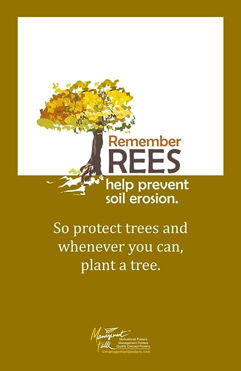 Amazon.com: managementtalk carteles árboles ayudar a ...