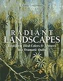 Radiant Landscapes: Transform
