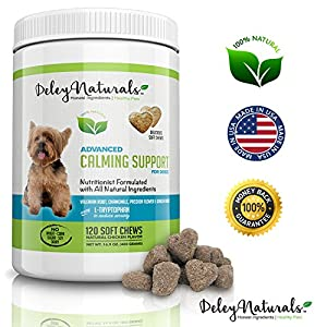 7. Deley Naturals – Anti-Stress Supplement for Dogs, 120 Chicken Soft Chews
