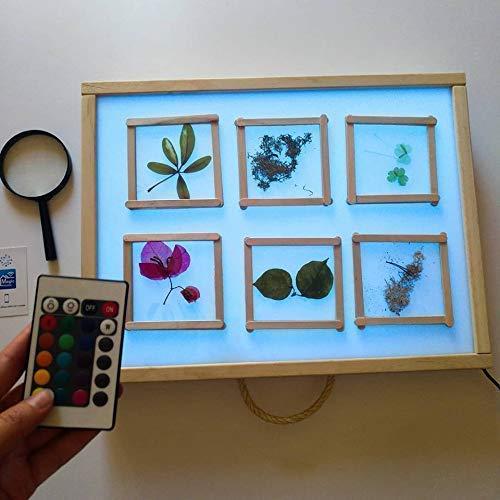 R-Crea - Mesa de luz Montessori RGB 48x37x7 Color Natural - Certificadas por la Universidad de Murcia