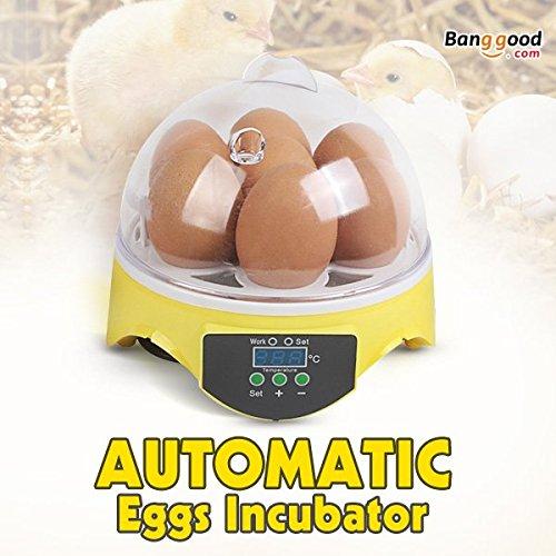 New EU Automatic Eggs Incubator Mini Incubation Equipment Farm 7 Eggs Household Teaching Experiments by Mkampong