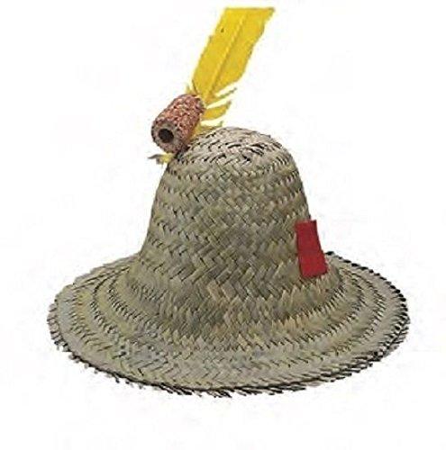 [Adult Hillbilly Farmer Pilgrim Mexican Straw Hat Costume Accessory] (Straw Farmer Hats)