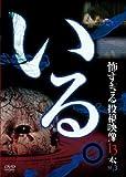 Special Interest - Iru. Kowasugiru Toko Eizo 13 Bon Vol.3 [Japan DVD] TOK-D0013