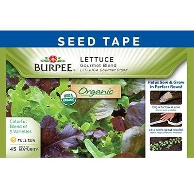 Burpee 60340 Certified Organic Seed Tape Lettuce Gourmet Blend 22.5 Ft 240 Seeds