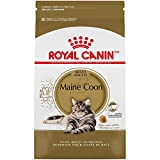 Royal Canin Maine Coon Formula Dry Cat Food (6 lb)