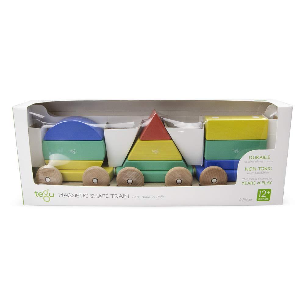 Tegu Train Shape Rainbow Magnetic Blocks