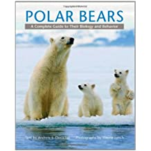 Polar Bears: A Complete Guide to Their Biology and Behavior