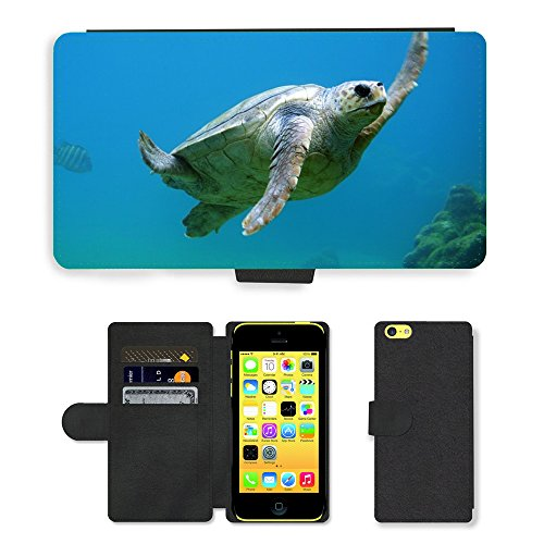 PU Leather Cover Custodia per // M00421711 Natation Sous l'eau Tortue // Apple iPhone 5C