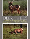 Deer and Elk, Dorothy Hinshaw Patent, 0395520037