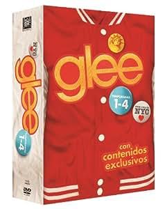 Glee - Temporadas 1-4 [DVD]