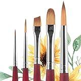 Princeton Velvetouch 3950 Series Brush Set - Fine