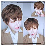 35cm Light Brown Wig Cosplay Original Exclusive Brother Handsome Guy Male Models Lolita Harajuku Male Short Wig
