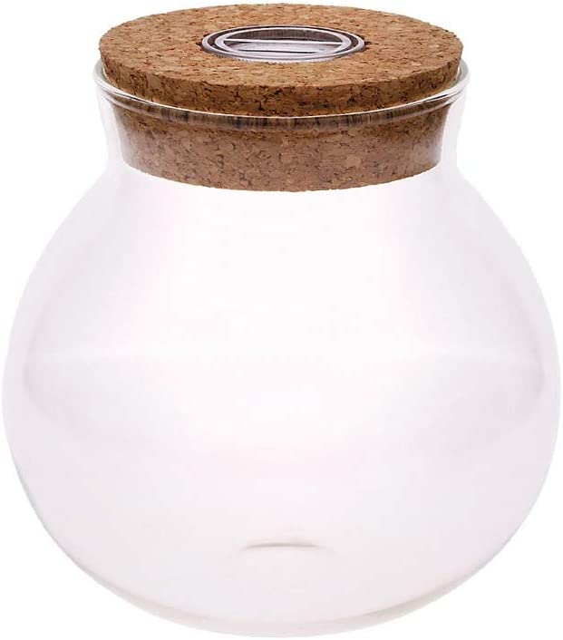 ZZMUK - Botella ecológica con Forma de Bola de Algas, Bolas de Musgo, Acuario de Cristal, Maceta de Flores con luz LED de Corcho