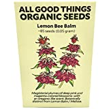Lemon Bee Balm (Monarda citriodora) Seeds (~85): Certified Organic, Non-GMO, Heirloom, Open Pollinated Seeds from The United States