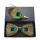 JEMYGINS Natural Feather Handmade Pre-tied Bow tie and Brooch Sets for Men (6)