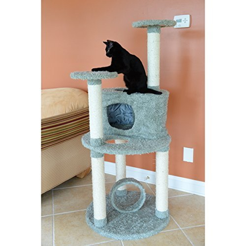 Armarkat Premium Dark Green Cat Condo Pet Furniture
