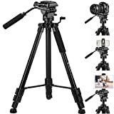 Tripod, 75 inch Tripod for Camera 15 lbs Loads with Fluid Head, 2 Quick Release Mounts and Tablet & Phone Mount (Color: Black, Tamaño: 75 inches Tripod)