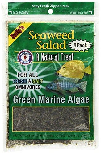 San Francisco Bay Brand ASF75004 4-Pack Seaweed Salad for Fresh and Salt Omnivores, Green (Food Seaweed Salad)