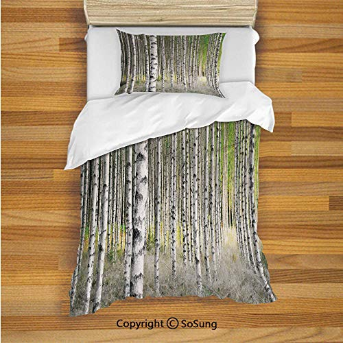 Birch Tree Kids Duvet Cover Set Twin Size, Peaceful Late Summer Woodland Trunks Leaves Foliage Serene Tranquil Decorative 2 Piece Bedding Set with 1 Pillow Sham,Green Light Grey Black