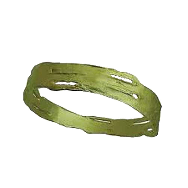 """Birch Bark"" Green Bronze Bangle by Michael Michaud for Silver Seasons…"