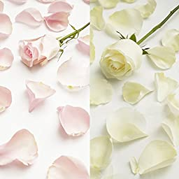 Farm Fresh Natural White - Pink Rose Petals - 5000 petals