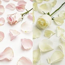 Farm Fresh Natural White - Pink Rose Petals - 5000 petals
