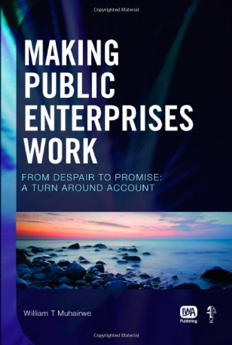 Making Public Enterprises Work: From Despair to Promise - A Turn Around Account by Brand: IWA Publishing