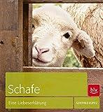 Schafe: Eine Liebeserklärung