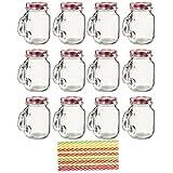 12-Pack Mason Jars - Clear Mini Mason Jar Set with Decorative Lids and Plastic Straws, Glass, Assorted Colors, 3.5 x 3 x 2 Inches.