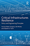 Critical Infrastructures Resilience: Policy and Engineering Principles