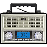 10 Band AM FM Shortwave Radio