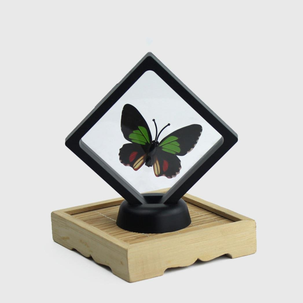 Rambling Transparent Jewelry Display Stands Necklace Earring Bracelet Showcase Floating Display Case Stand Holder Box (Black)