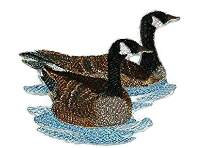 Amazon com: Nature weaved in threads, Amazing Birds Kingdom