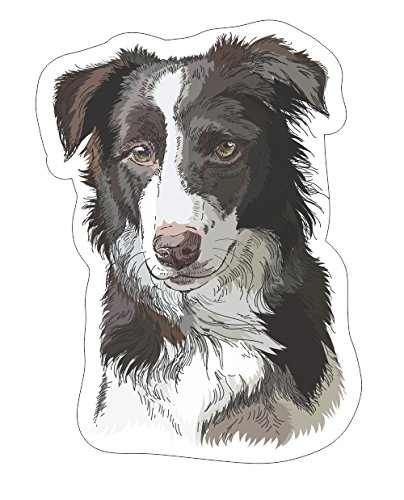 Border collie portrait Vinyl Bumper Sticker Decal Dog Family Love Pet