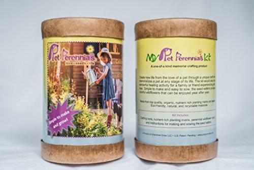 Make it Yourself Pet Perennials Kit Dog memorial garden craft ()