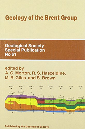 Geology of the Brent Group (Geological Society Special Publication)