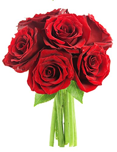 - KaBloom The Romantic Classic Red Rose Bouquet of 6 Fresh Cut Red Roses (Farm-Fresh, Long-Stem)