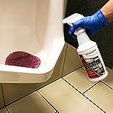 Bio-Enzymatic Urine Digester with Odor Neutralizer