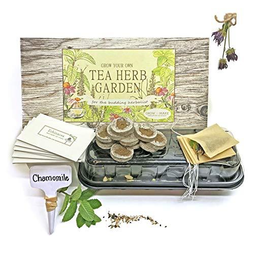 Grow and Make DIY Tea Herb Garden Kit - Learn The Basics of Herbalism with Five Seed Varieties to Grow at Home (Best Plants To Grow At Home)